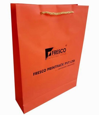 Printed Non Tearable Paper Bag